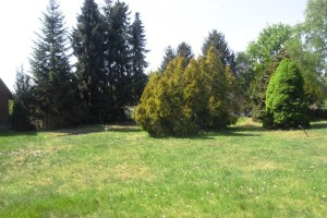 Grunstück (2011-05-07)