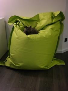 Kinzler Riesensitzsack grün